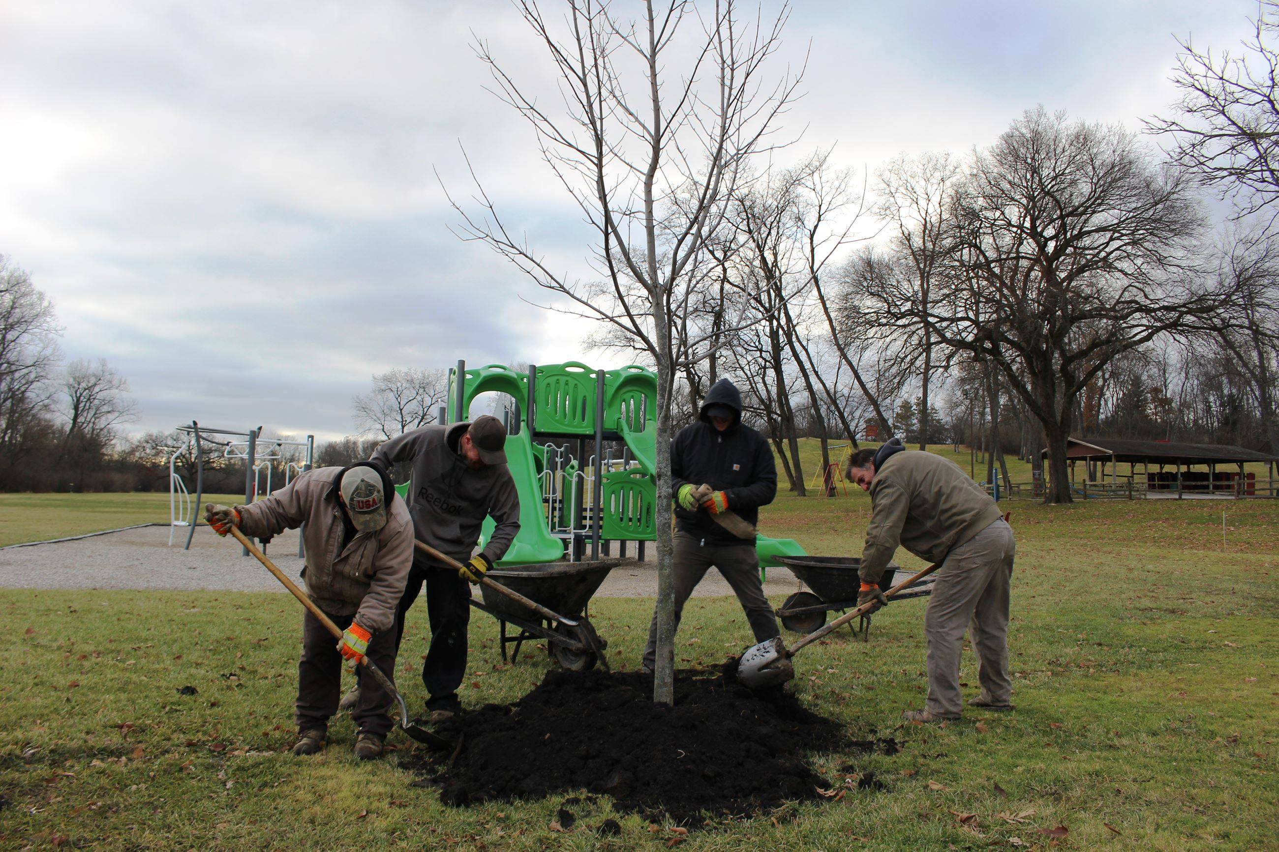 Fox River Park tree planting